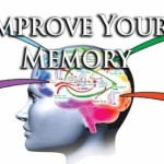 brain function development